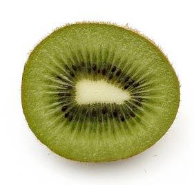 Fuzzy Kiwi (Actinidia deliciosa 'Saanichton')